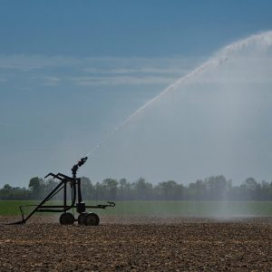 irrigation, agriculture, water